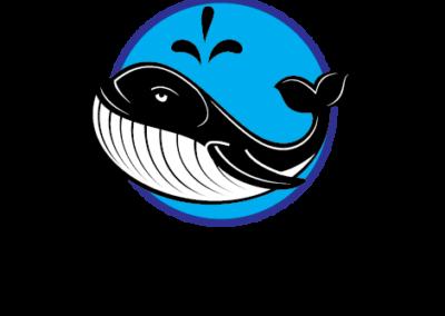 Mobi Sock Logo